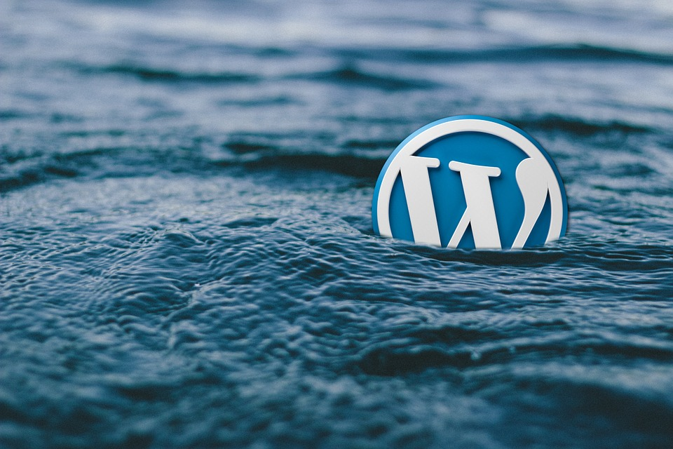 WordPress Course at Agency 254